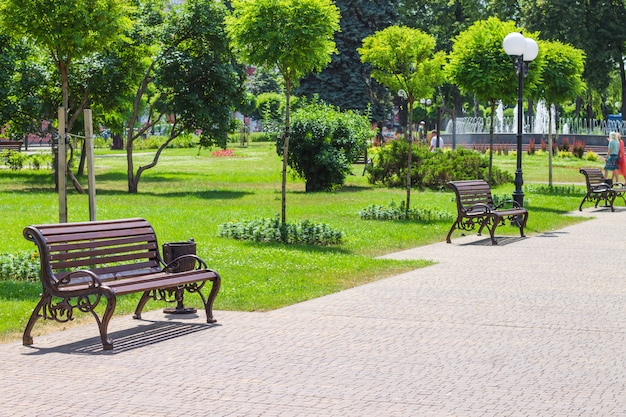 Landscape design of the city park with benches and a fountain.