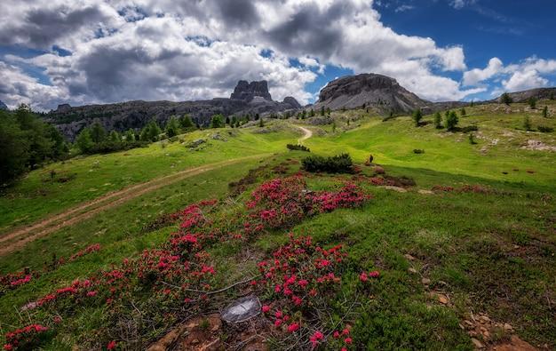 Landscape above the falzare