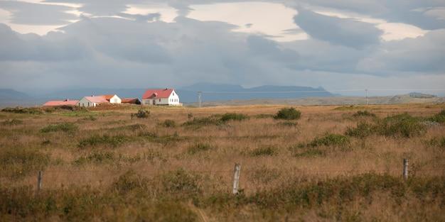 Landscape, farmstead in fenced pasture