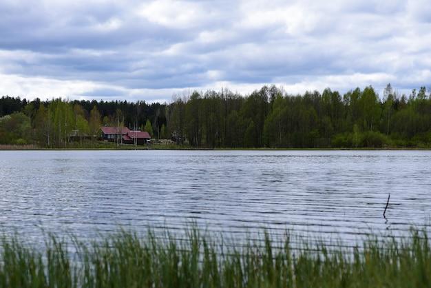 村の森の湖の風景