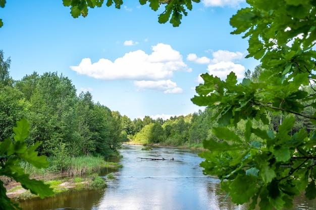 풍경 숲 강 여름입니다. 녹색 자연 풍경입니다. 숲 강과 푸른 하늘에 구름과 여름 풍경. 숲속 풍경을 따라 부드럽게 흐르는 잔잔한 강