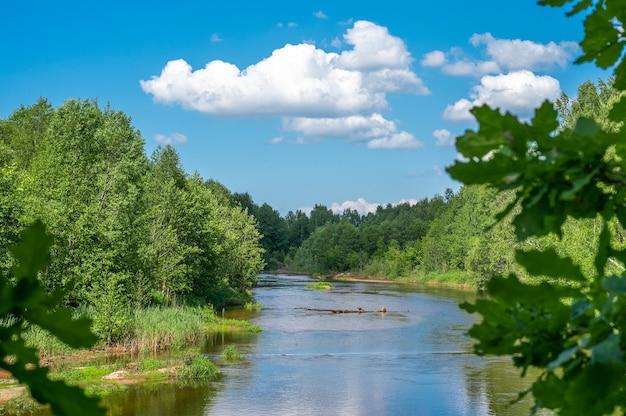 풍경 숲 강 여름입니다. 녹색 자연 풍경입니다. 숲 강과 푸른 하늘에 구름과 여름 풍경. 시골 풍경