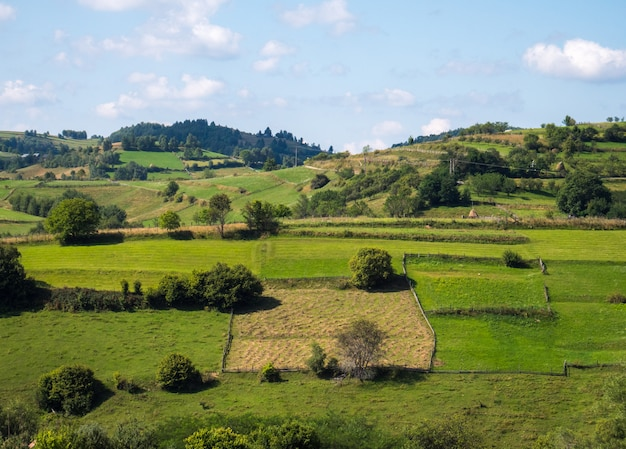 Landscape from countryside in summer sunny day
