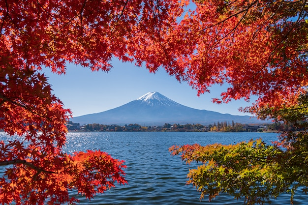 Landscape of fuji mountain with beautiful autumn leaves.