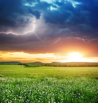 Landscape of a green meadow during a thunderstorm