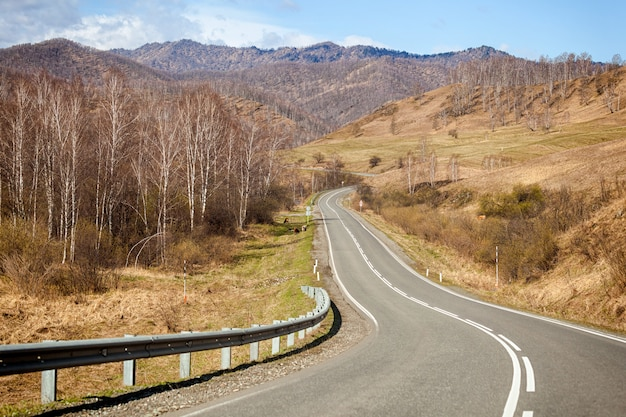Landscape of the high mountains of the altai of the chemal district in early spring with coniferous and birch forests and the road, the sky is covered with clouds
