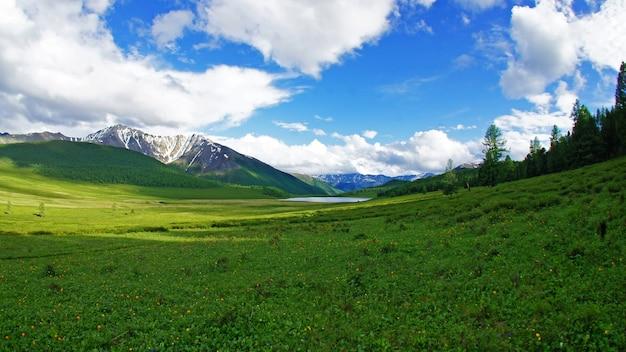 アルタイの高山の風景。フィールドの風景。