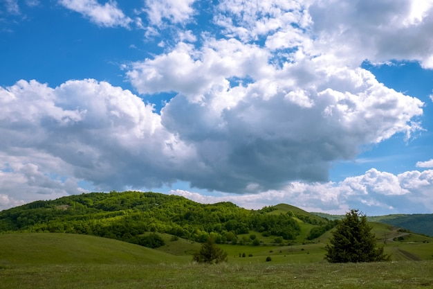 Landscape of hills covered in forests under the sunlight and a cloudy sky at daytime