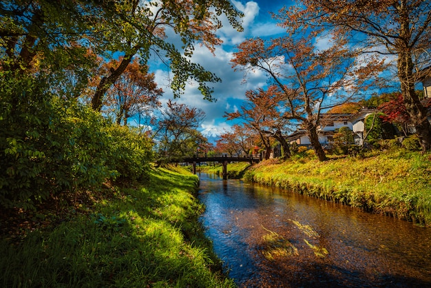 Landscape image of mt. fuji over canal with autumn foliage at daytime in minamitsuru district, yamanashi prefecture, japan.
