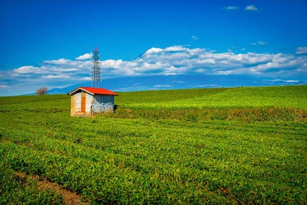 Пейзажное изображение горы. фудзи и зеленый чай field с павильоном на дневном времени в shizuoka, японии.
