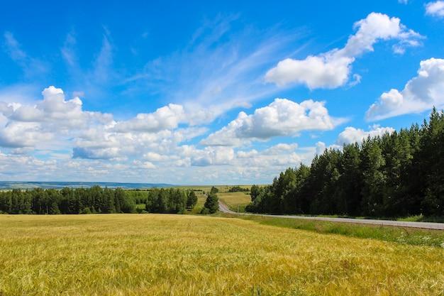 Пейзаж в сельской местности с видами на поля, леса, небо и дорогу