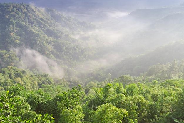Landscape into batur volcano