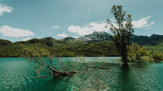 Landscape of a lake surrounded by mountains