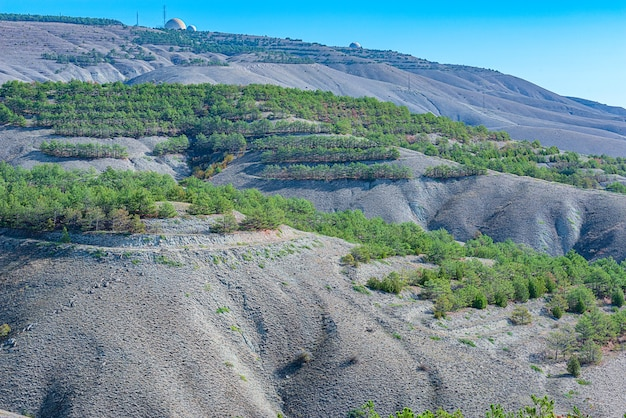 Landscape of loamy and cretaceous relief mountains with forest plantations