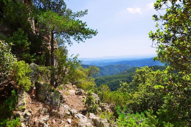 Landscape of montseny. catalonia