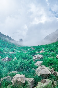 Landscape of a mountain slope covered with grass