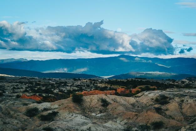 Paesaggio di montagne e cespugli