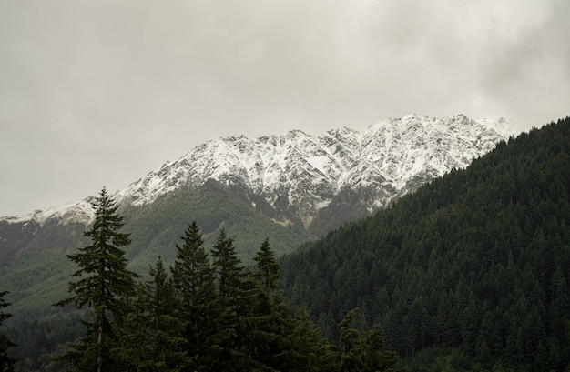 Landscape of mountains covered in forests and snow under a cloudy sky