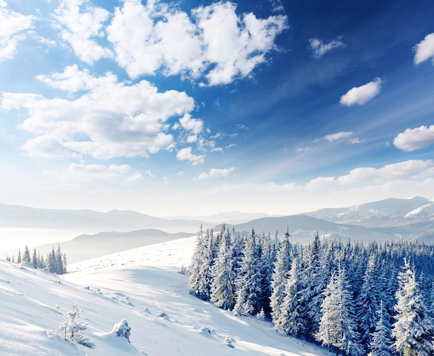 Landscape of the mountains covered in snow