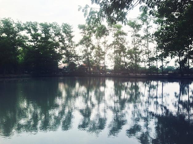 Пейзажная природа спокойная спокойная концепция