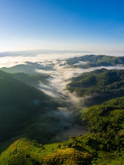 Landscape nature view at morning on the mountain fog chiang rai thailand