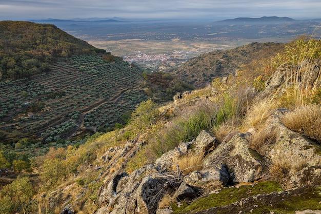 モンタンチェスの近くの風景。エストレマドゥーラ。スペイン。