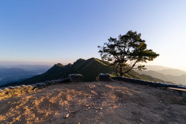 Landscape of new view point slope, high peak at pha tang ,chiang rei thailand.