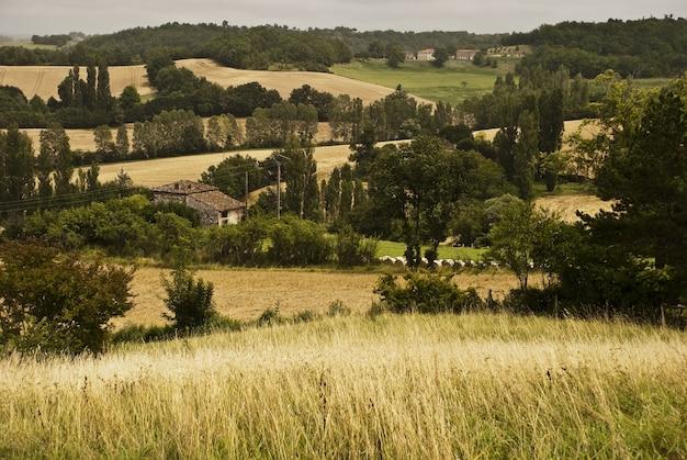 Пейзаж поля, покрытого зеленью с холмами на заднем плане в tarn et garonne во франции
