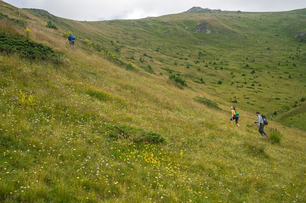 曇り空の下でハイカーが登る緑に覆われた丘の風景