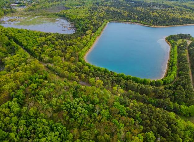 Пейзаж озера в лесу