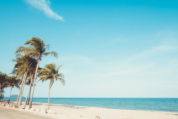 夏の熱帯のビーチに子の木の風景