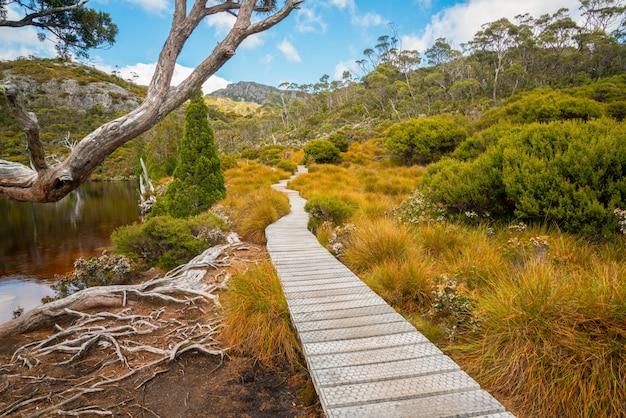 요람 산 타 즈 마니아, 호주의 풍경입니다.