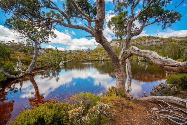 Пейзаж горы колыбель тасмании, австралия.