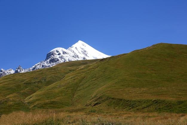 푸른 잔디와 눈 덮인 산의 풍경