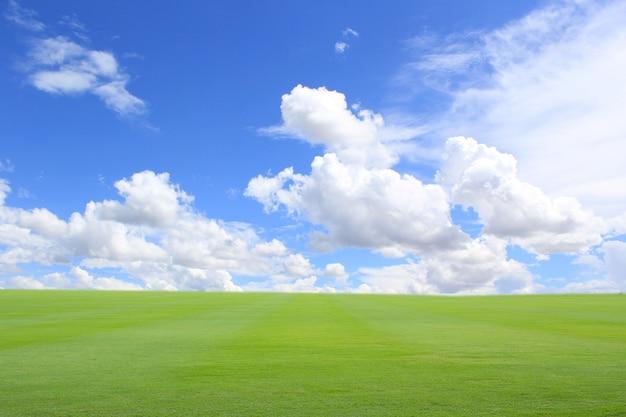 緑の芝生と青い空の風景