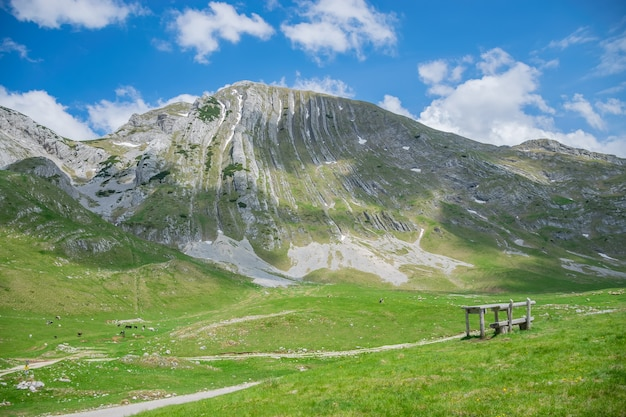 高山と緑の野原の風景。