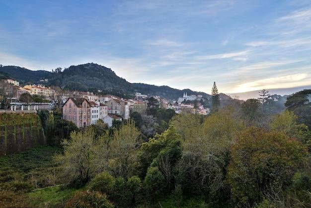 일몰 동안 흐린 하늘 아래 건물과 숲으로 덮여 언덕의 풍경
