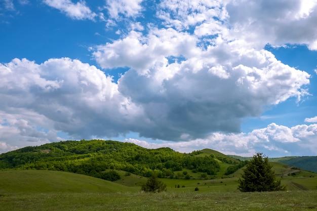 日光と昼間の曇り空の下で森に覆われた丘の風景