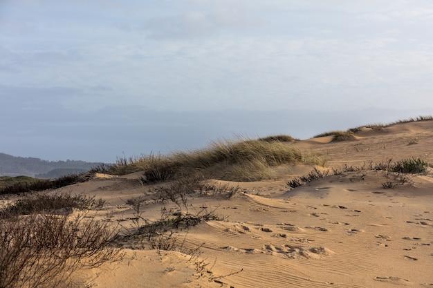 日光と曇り空の下で草と砂に覆われた丘の風景