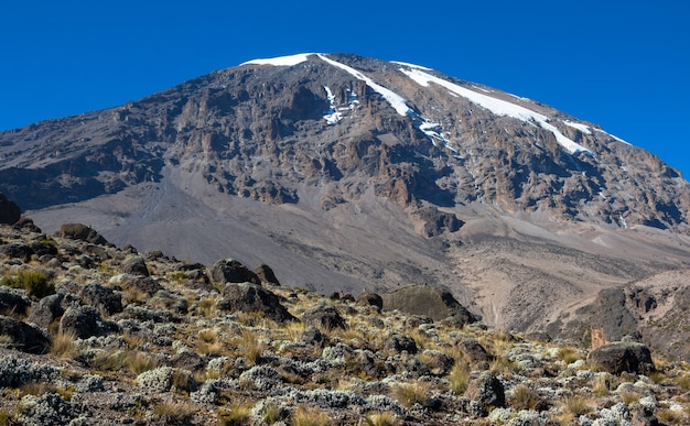 Пейзаж горы килиманджаро - крыши африки в танзании.