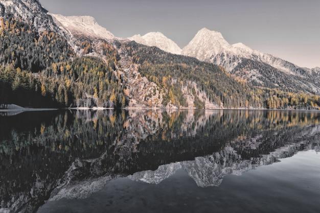 Пейзаж горы и деревья