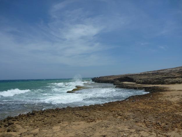 Пейзаж пальмового берега и глубокого синего неба