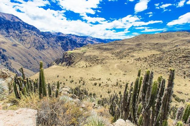 페루의 풍경