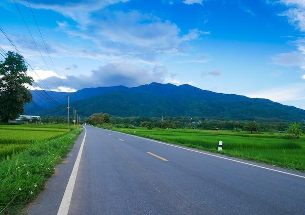 田んぼ、山、コンクリート道路の風景