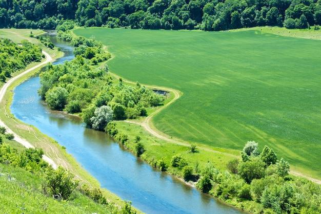 강 풍경, 인근 숲과 시골 길이 지나가는 녹색 밀밭