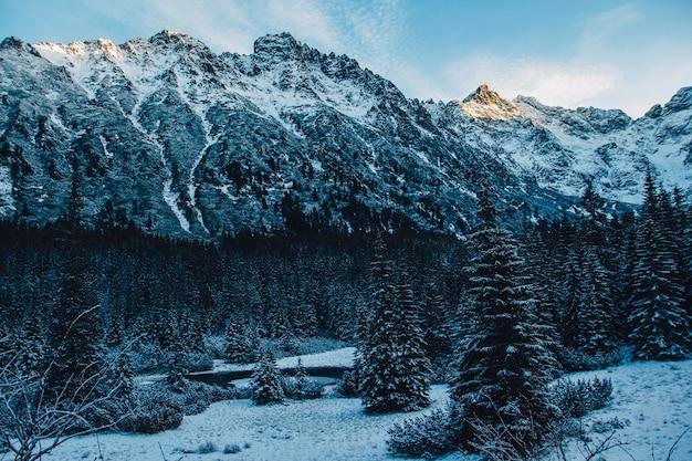 화창한 날씨에 록 키 산맥의 눈 덮인 봉우리의 풍경. 자연과 여행의 개념.