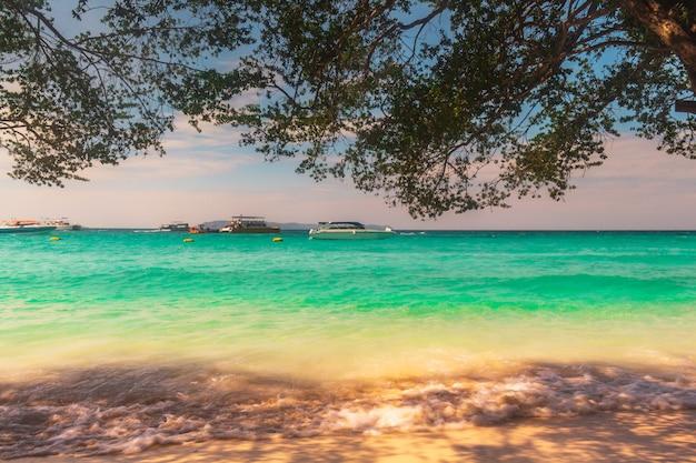 リラックスした休日のための美しい熱帯のビーチの風景