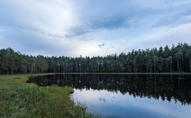 Пейзаж лесного озера в европе