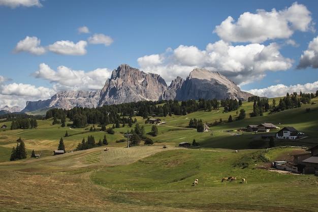 Пейзаж скалистого зайзер альм и широкое пастбище в compatsch италия