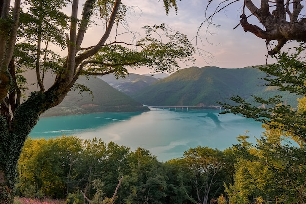 日光と曇り空の下で緑に覆われた丘に囲まれた海の風景